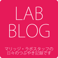 marriage lab blog